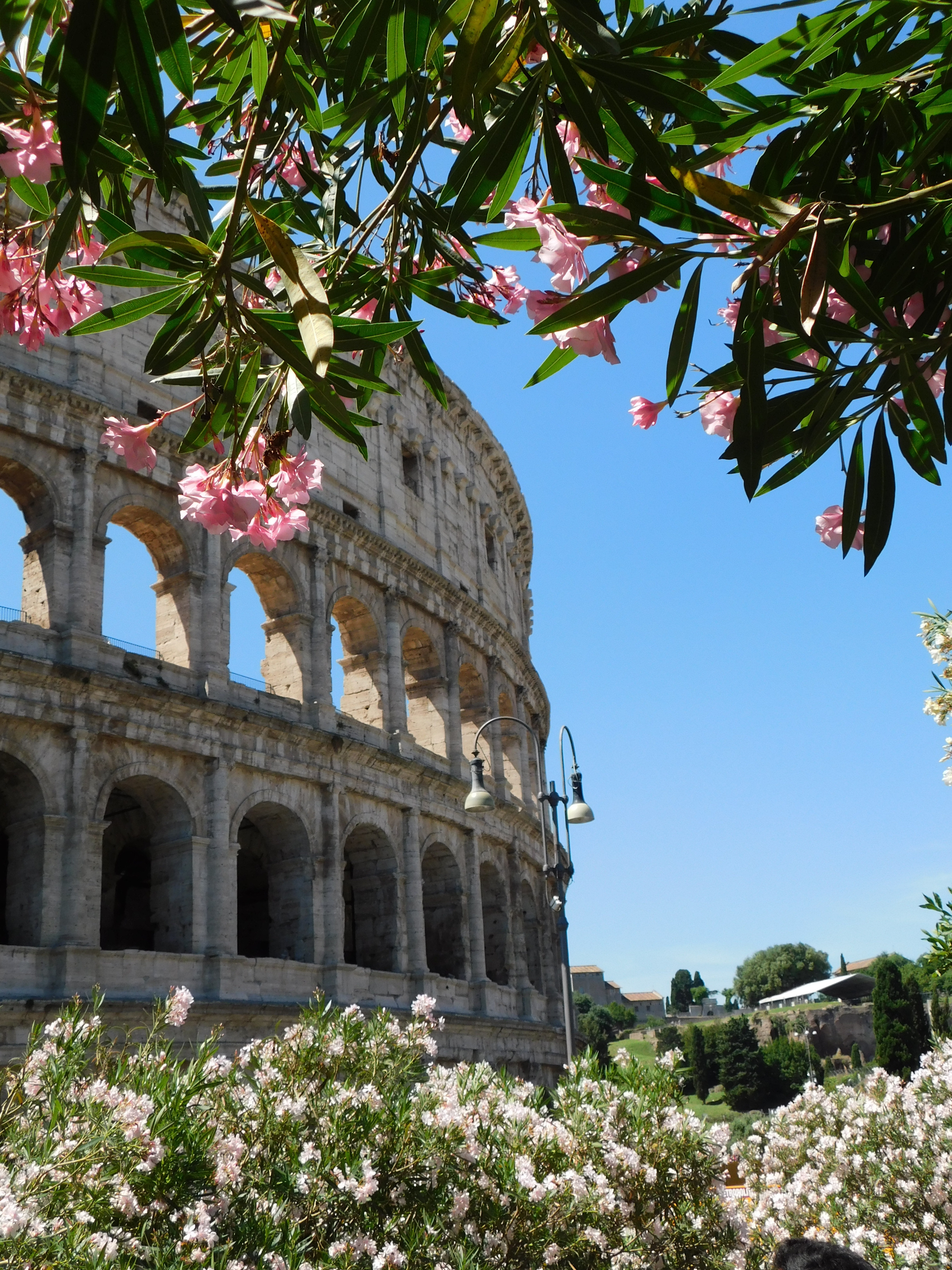 Nominated for the Versatile Blogger award - Travel - 10 reasons to visit Rome